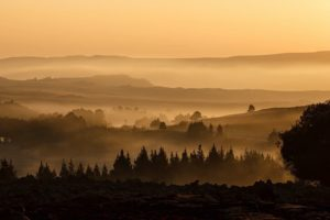 9 Tricks beim Nebel Fotografieren